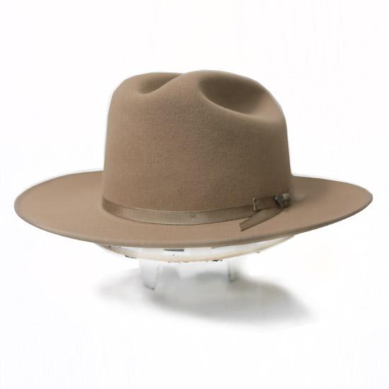 c00aaedf1578fe Stetson: Alcalas Western Wear Men's 6X Fawn